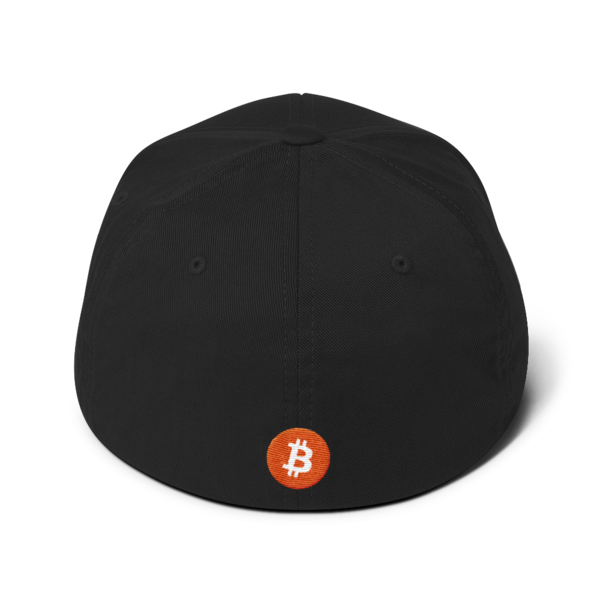 Buy The Dip – Flexfit Structured Cap – Dark - Black - Back