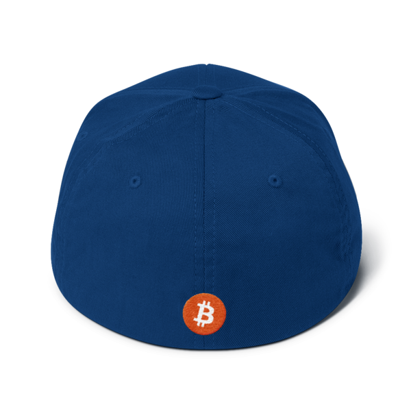 Buy The Dip – Flexfit Structured Cap – Dark - Blue - Back