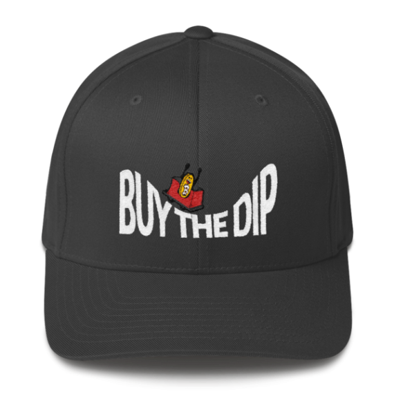 Buy The Dip – Flexfit Structured Cap – Dark - Dark Grey - Front