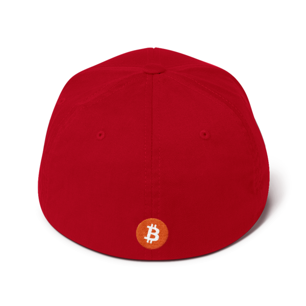 Buy The Dip – Flexfit Structured Cap – Dark - Red - Back
