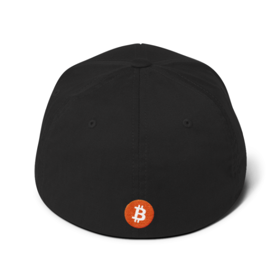 Just HODL it – Flexfit Structured Cap – Dark - Black - Back