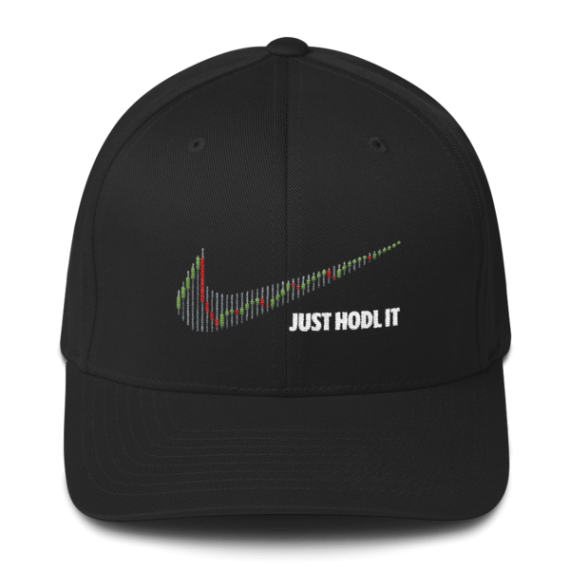 Just HODL it – Flexfit Structured Cap – Dark - Black - Front
