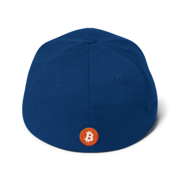Just HODL it – Flexfit Structured Cap – Dark - Blue - Back