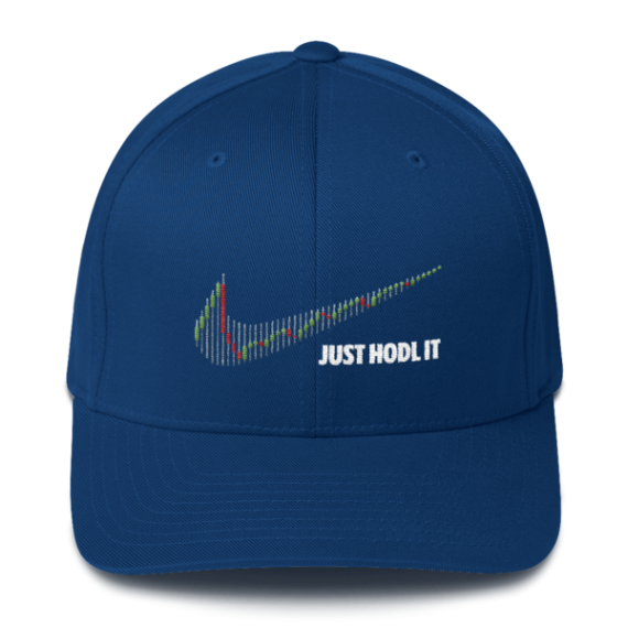 Just HODL it – Flexfit Structured Cap – Dark - Blue - Front