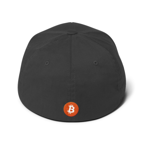 Just HODL it – Flexfit Structured Cap – Dark - Dark Grey - Back