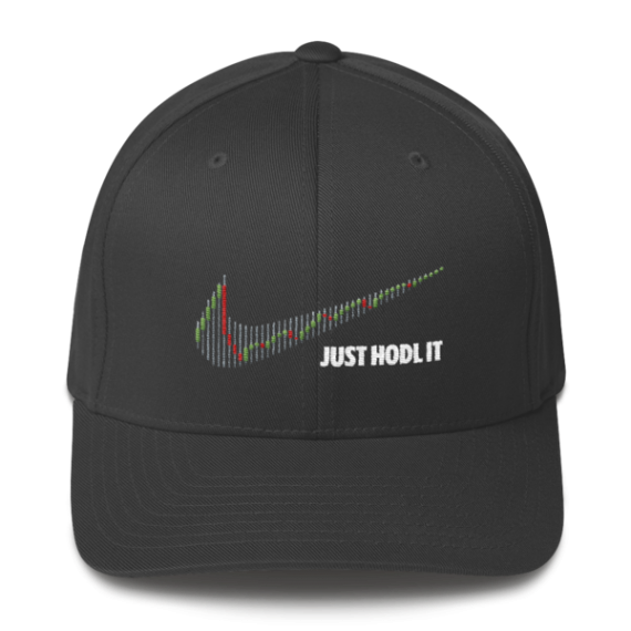 Just HODL it – Flexfit Structured Cap – Dark - Dark Grey - Front