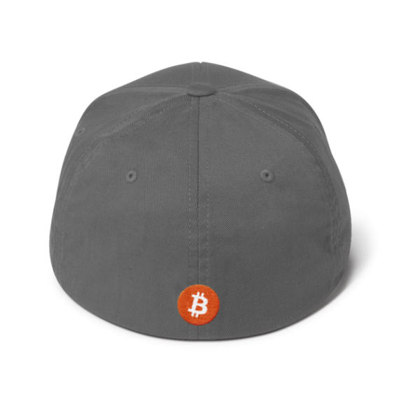 Just HODL it – Flexfit Structured Cap – Dark - Grey - Back