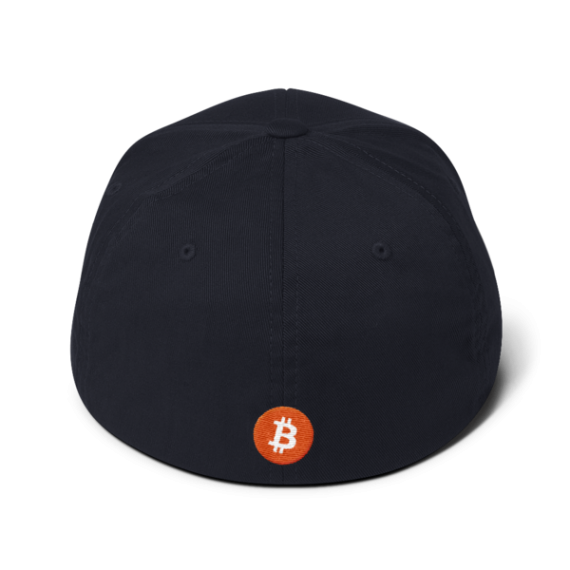 Just HODL it – Flexfit Structured Cap – Dark - Navy - Back