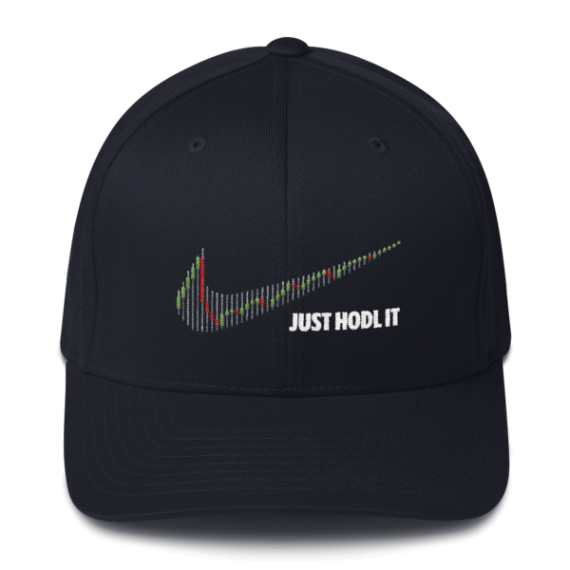 Just HODL it – Flexfit Structured Cap – Dark - Navy - Front