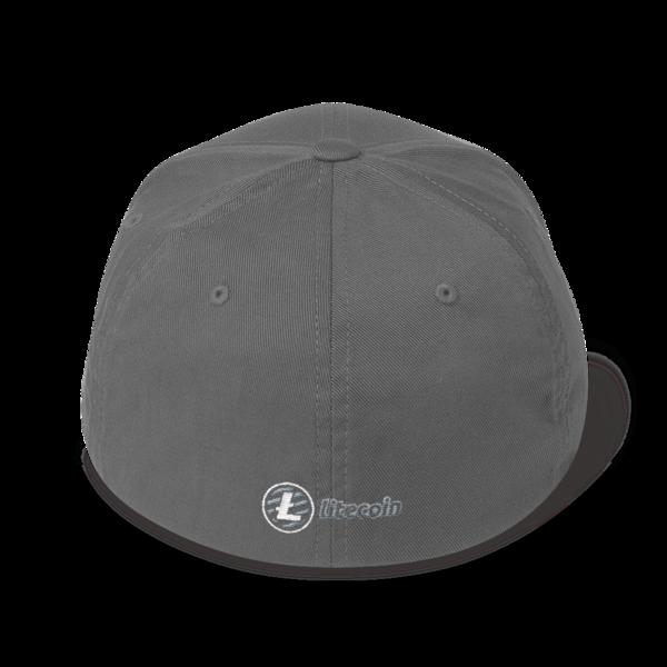Just HODL it – Litecoin - Flexfit Structured Cap – Dark - Grey - Back
