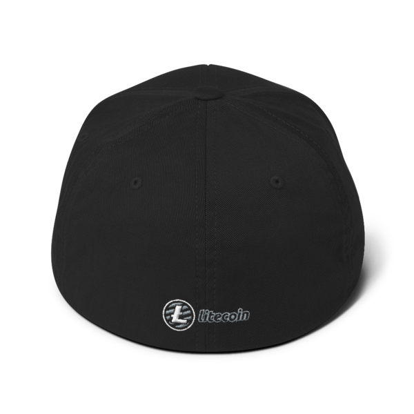Litecoin logo - 3D Puff – Flexfit Structured Cap - Black - Back