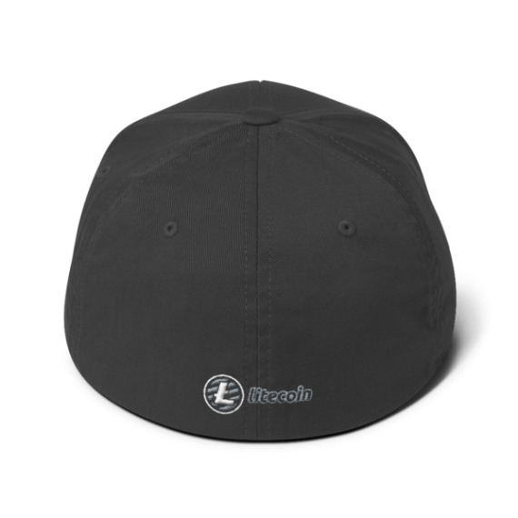 Litecoin logo - 3D Puff – Flexfit Structured Cap - Dark Grey - Back