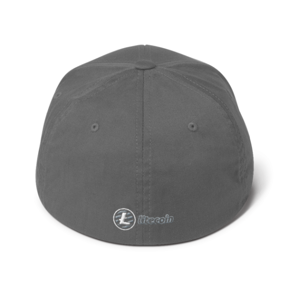 Litecoin logo - 3D Puff – Flexfit Structured Cap - Grey - Back